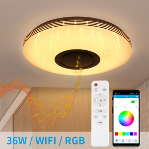 3D Ceiling Lamp Round Music Ceiling Light Wifi + Bluetooth Speaker App Control/ Remote Control/ Google Home With Warm Cold White RGB Light Color