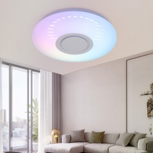 3D Ceiling Lamp Round Light Chasing Music Ceiling Light Bluetooth Speaker 2.4G Remote Control With Warm Cold White RGB Light Color