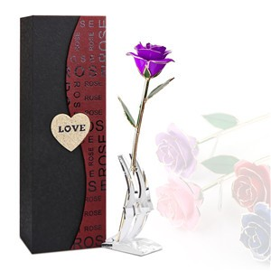 Creative Valentine's Day 24K Gold Trimmed Rose Long Stem Flower with Transparent Stand and Exquisite Gift Box Romantic Gift for Lover Girl Friend