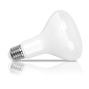 E27 LED 12W/15W BR30 Flood Light Replacement Incandescent Bulb AC 110V