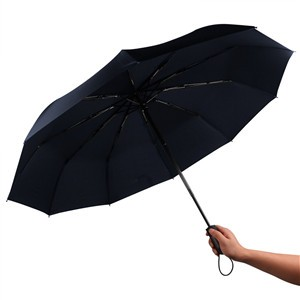 Automatic Umbrella 10-Rib Strong Windproof Super Wide 46inch Outdoor Travel Umbrella Auto Open and Close